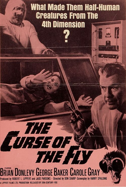 the curse of the fly poster